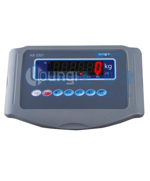 亚津AB5301计重显示器