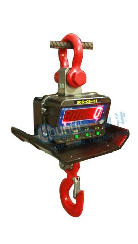 OCS-GKS隔热直视电子吊秤