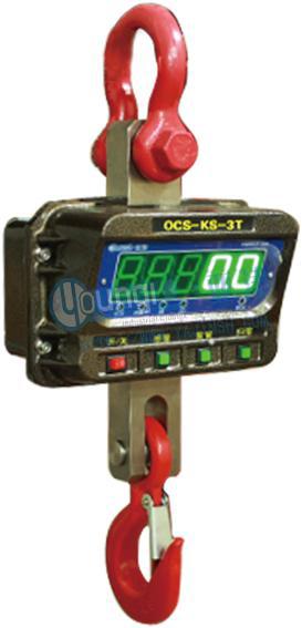 OCS-KS直视电子吊秤