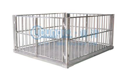 带围栏动物地磅,3吨亚津品牌不锈钢电子磅秤